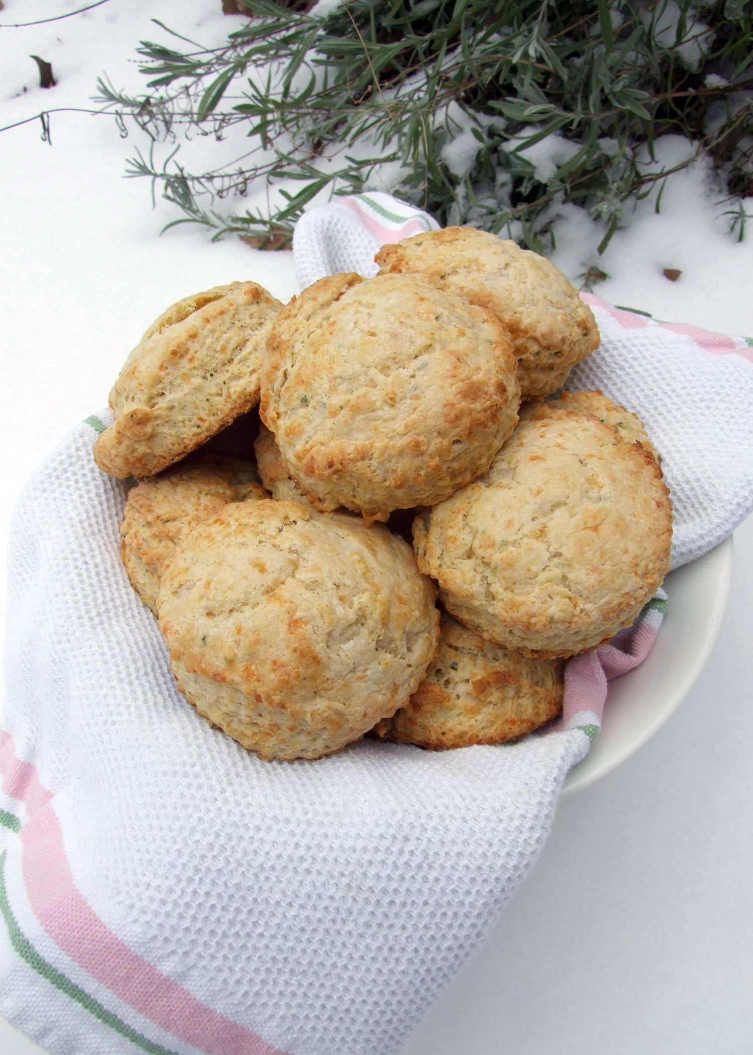 Sage Cheddar Biscuits (January 2010) | Food: Delicious | Pinterest