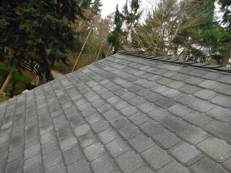 Best Gaf Camelot Ii Outdoor Roof Colors Outdoor Decor Outdoor 400 x 300