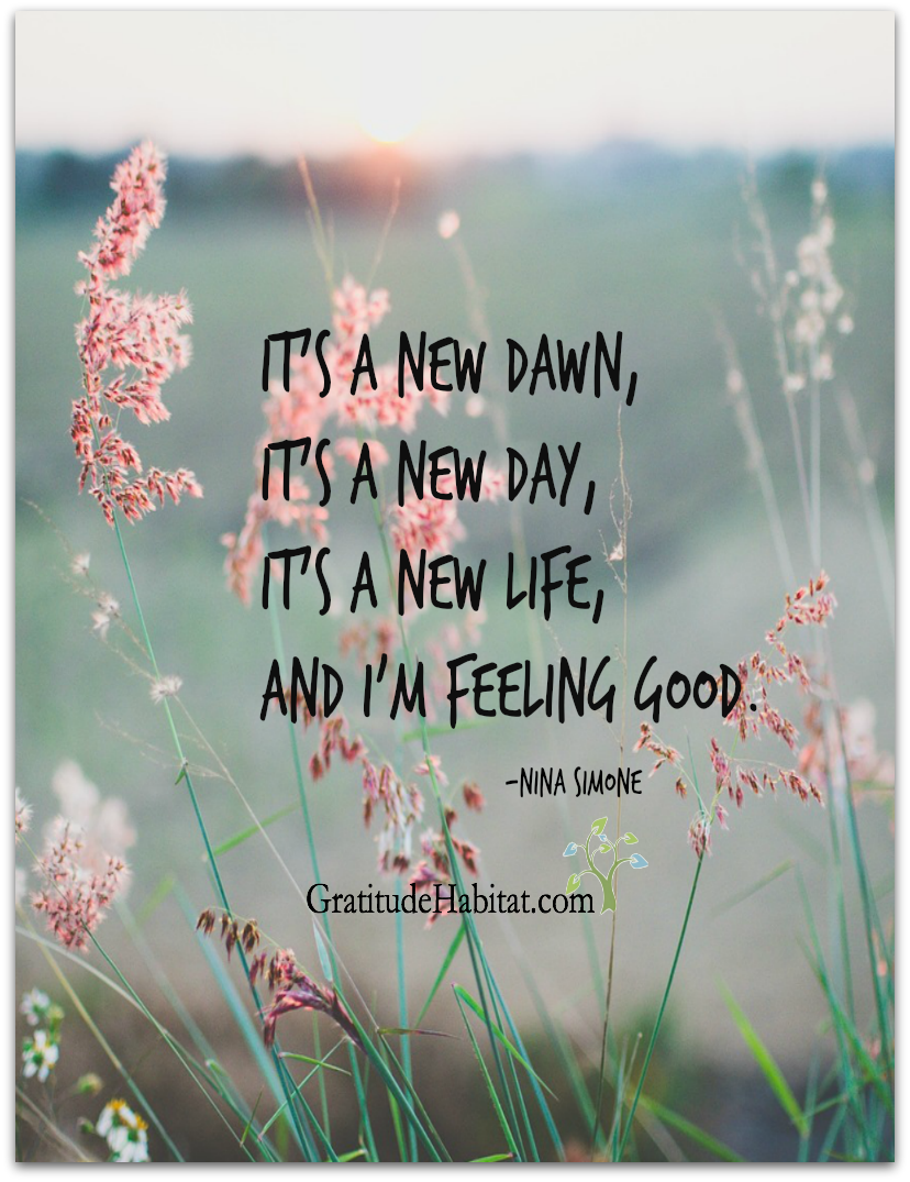 Its A New Day Choose Happiness Visit Us At Wwwgratitudehabitat