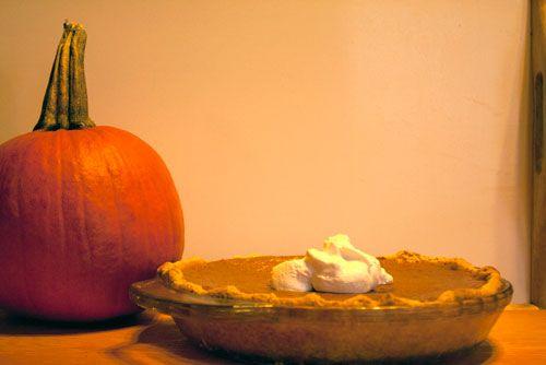 How to pick the perfect pumpkin! #fall #autumn #pumpkin