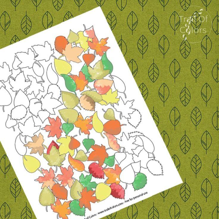 Fall Leaves Coloring Page   Hojas de otoño, Colorear y Hoja