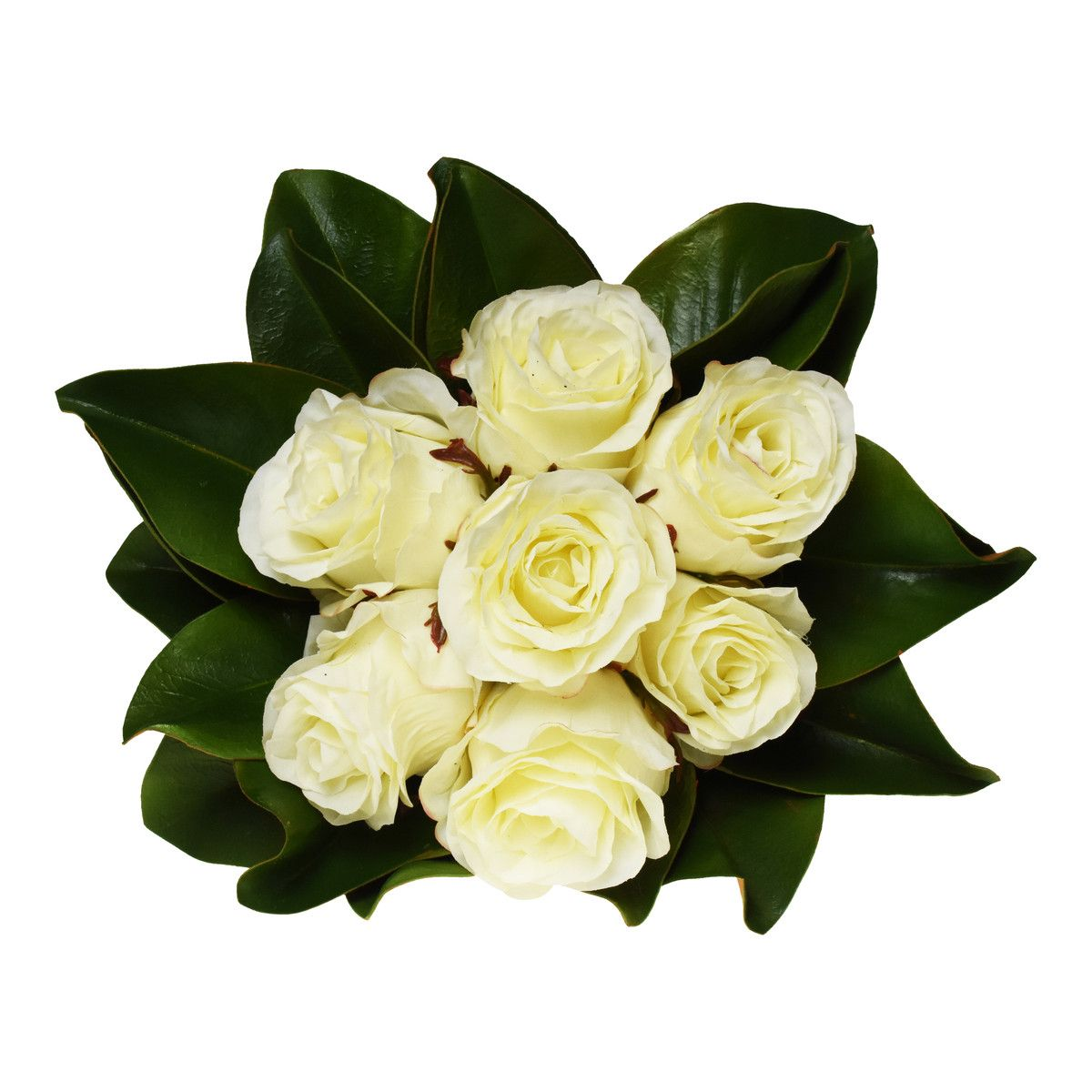 White Roses With Magnolia Leaves Simple In Design With White Roses