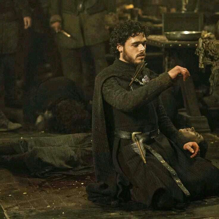 Robb Stark Game Of Thrones Series King In The North Robb Stark