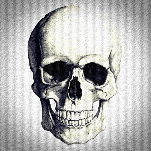 estas muerto : Photo