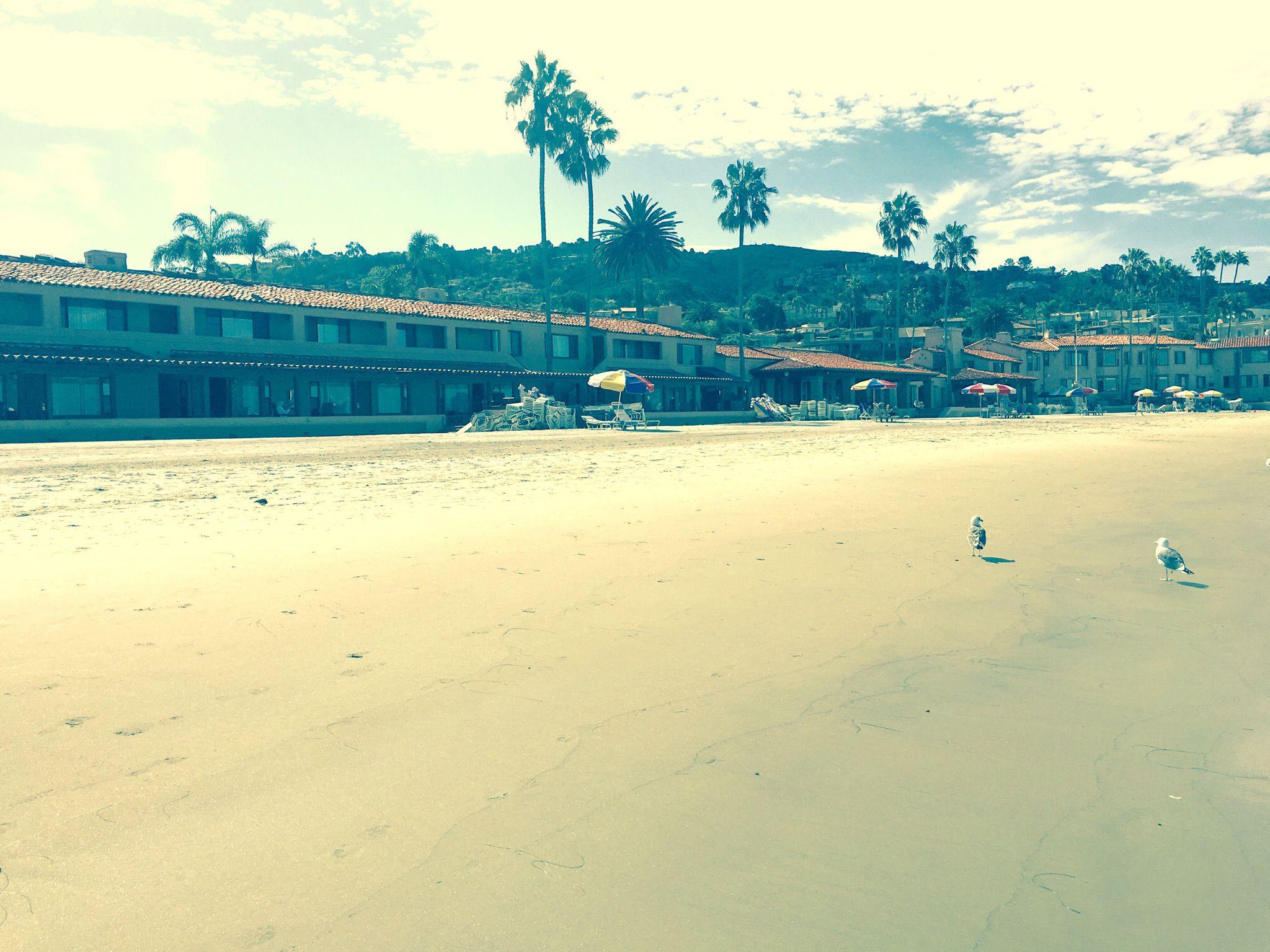 Little walk down the beach on this fine Thursday!