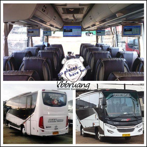 Medium Bus, DianTrans Seat 31/33