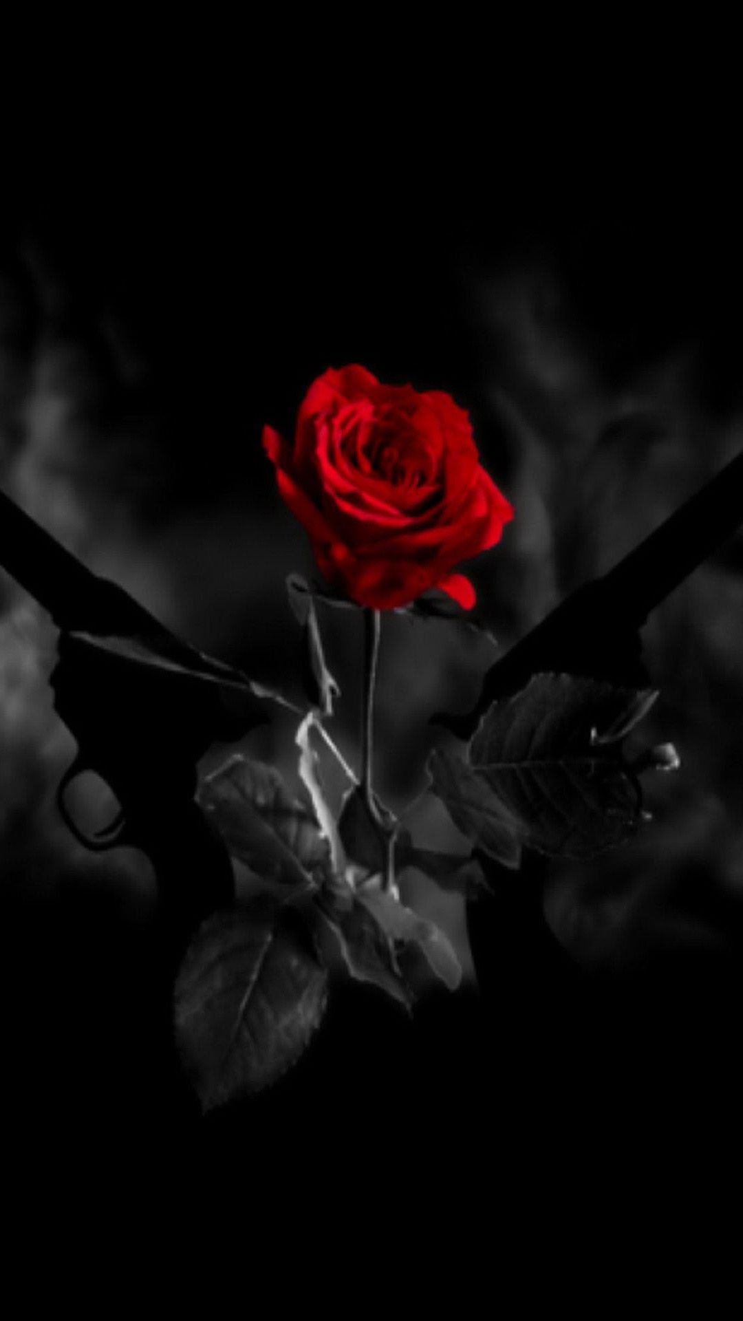 Red Rose With Black Shade Phone Wallpaper Images Aesthetic Roses Dark Red Roses