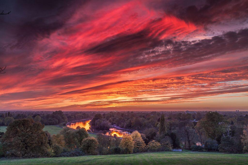 Thames from Richmond Hill - November Sunset