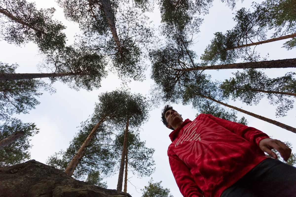 Parkour in the forest - Electric Blue Food - Kitchen stories from abroad