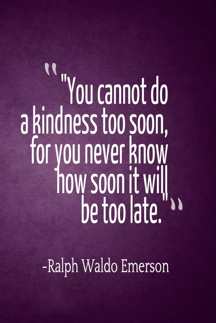 Quote About Kindness Quotes About Kindness To Inspire You To Help Others  Kindness