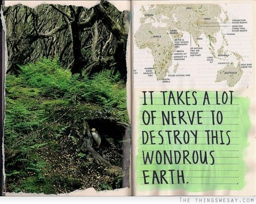 Pin By Amy Wileman On Today You Inspire Me Quotes Nature