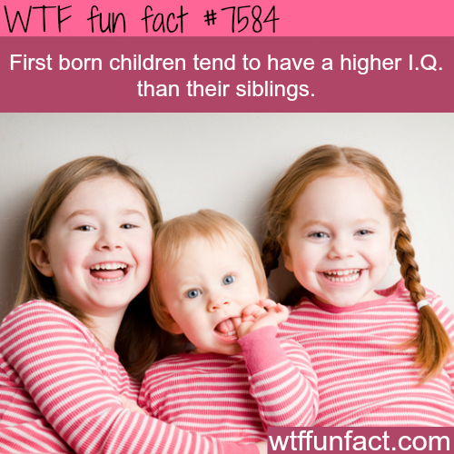 facts about the oldest child