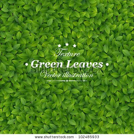 stock vector : Green leaves texture. Vector illustration, via Shutterstock