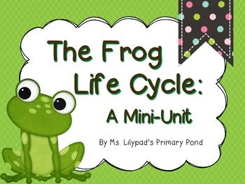 Science Kindergarten Worksheets And Printables   Educational Games moreover  additionally Frog Life Cycle Sequencing Cards   Enchanted Learning Software moreover  in addition Best 25  Frog life cycles ideas on Pinterest   Spring cycle additionally  additionally 25 Easy Frog and Toad Ideas and Activities   Teach Junkie also Kindergarten Frog Life Cycle Worksheet   frog life cycle craft together with Life Cycle of a Frog Worksheet   Itsy Bitsy Fun additionally 27 best Life Cycle Worksheets images on Pinterest   Science as well Stages of Frog Life Cycle Worksheet   Turtle Diary. on kindergarten frog life cycle worksheet