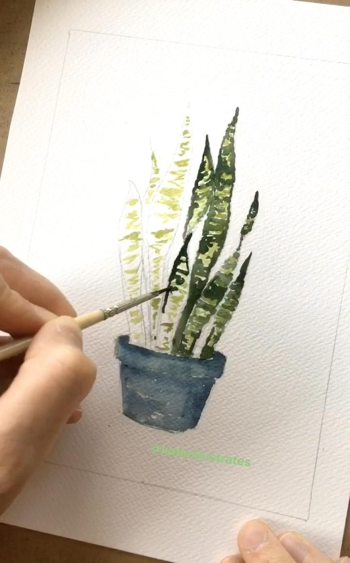 How I Paint a Snakeplant