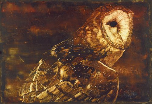 """""""Radiance"""" Owl by Mary Blake"""