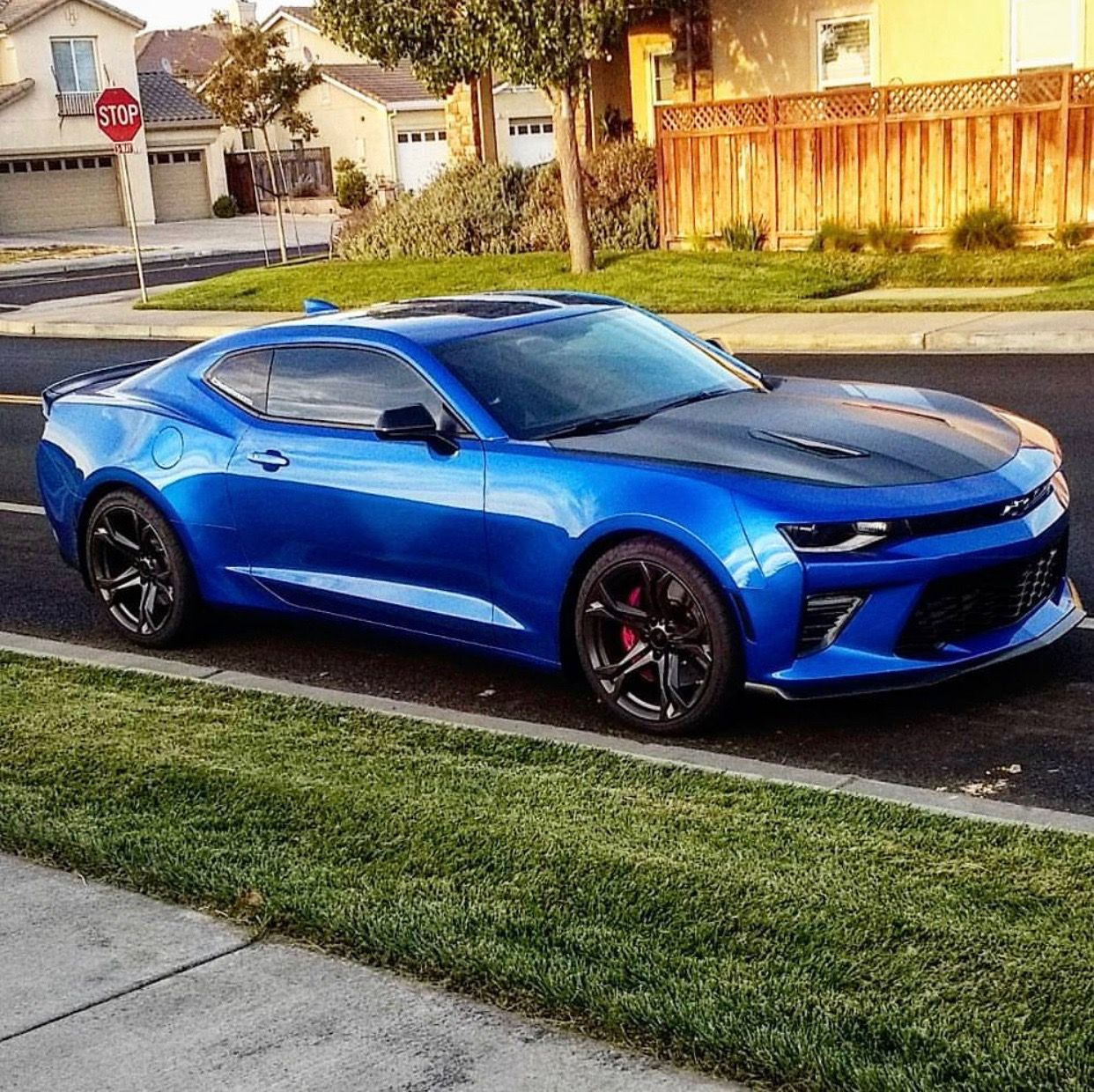 Camaro chevy camaro ss 1le : Chevrolet Camaro SS 1LE painted in Hyper Blue Photo taken by ...