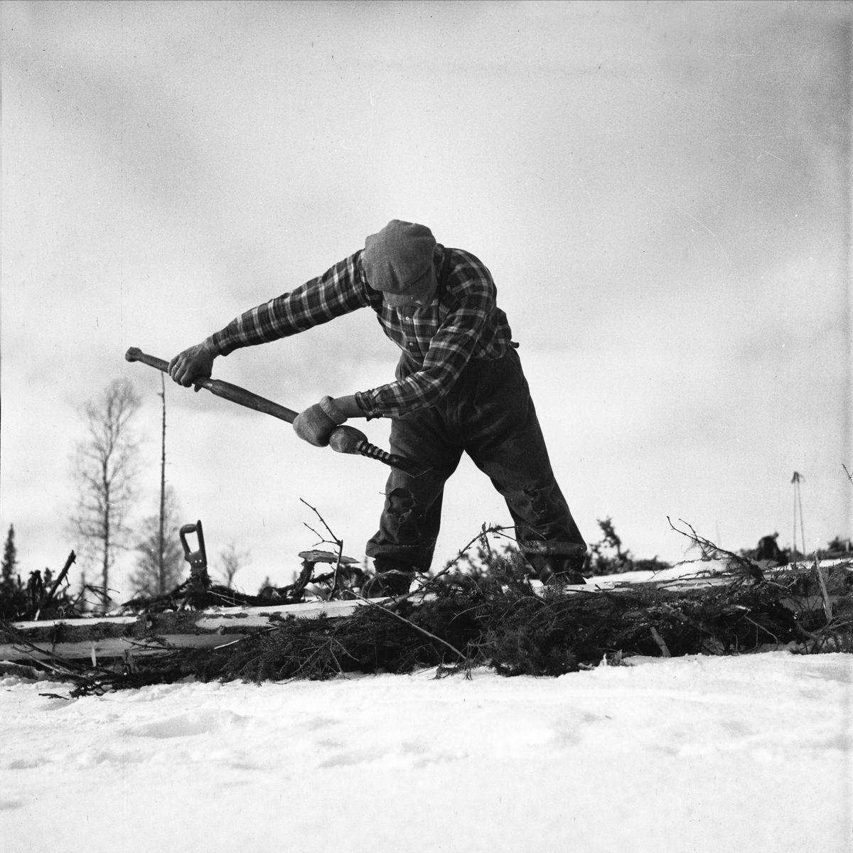 Tømmermåling, Engerdal @ DigitaltMuseum.no