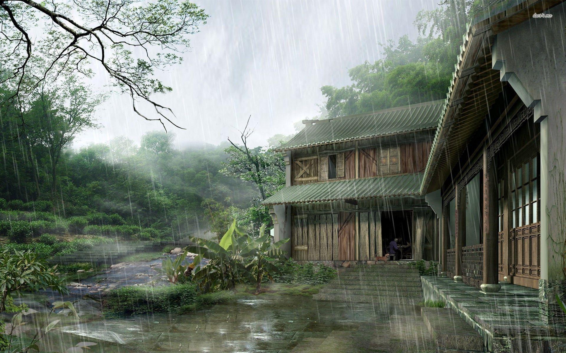 Rainy Window Hd Wallpaper Live Wallpapers Home Art Dojo