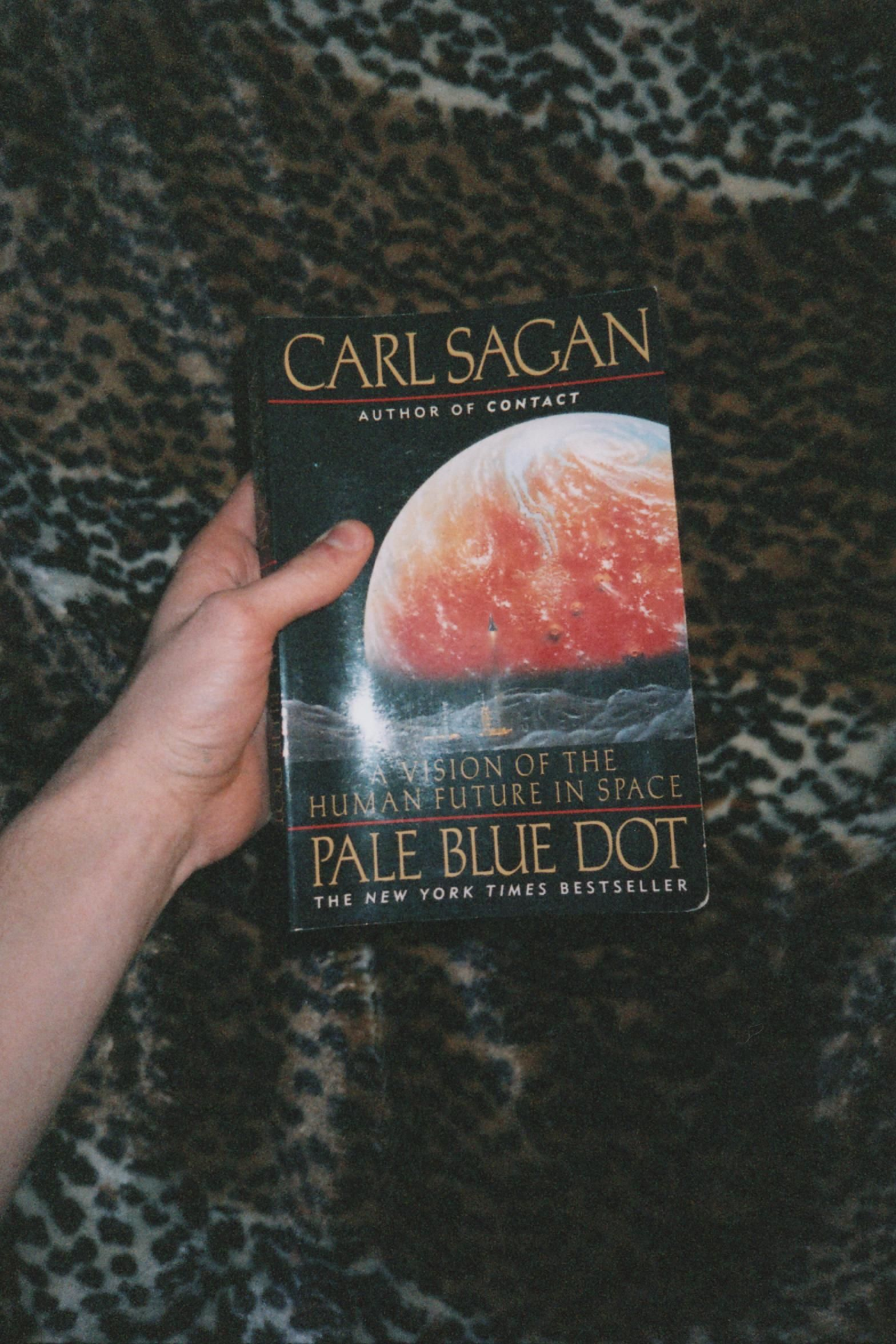 Pale Blue Dot A Vision of the Human Future in Space