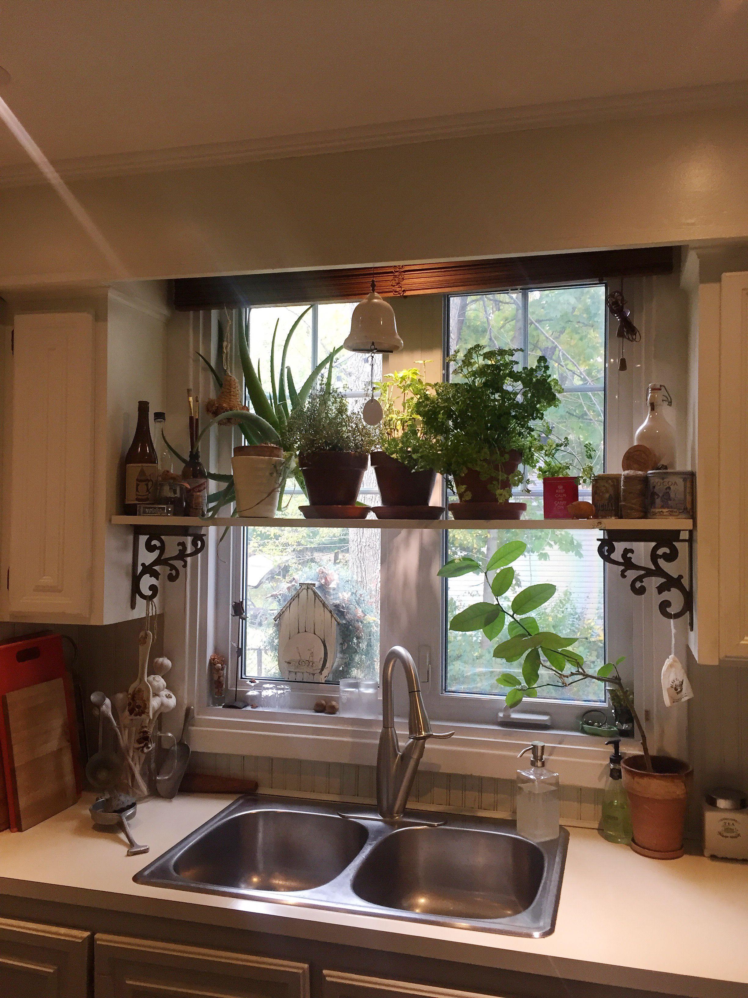 herb shelf above the kitchen sink