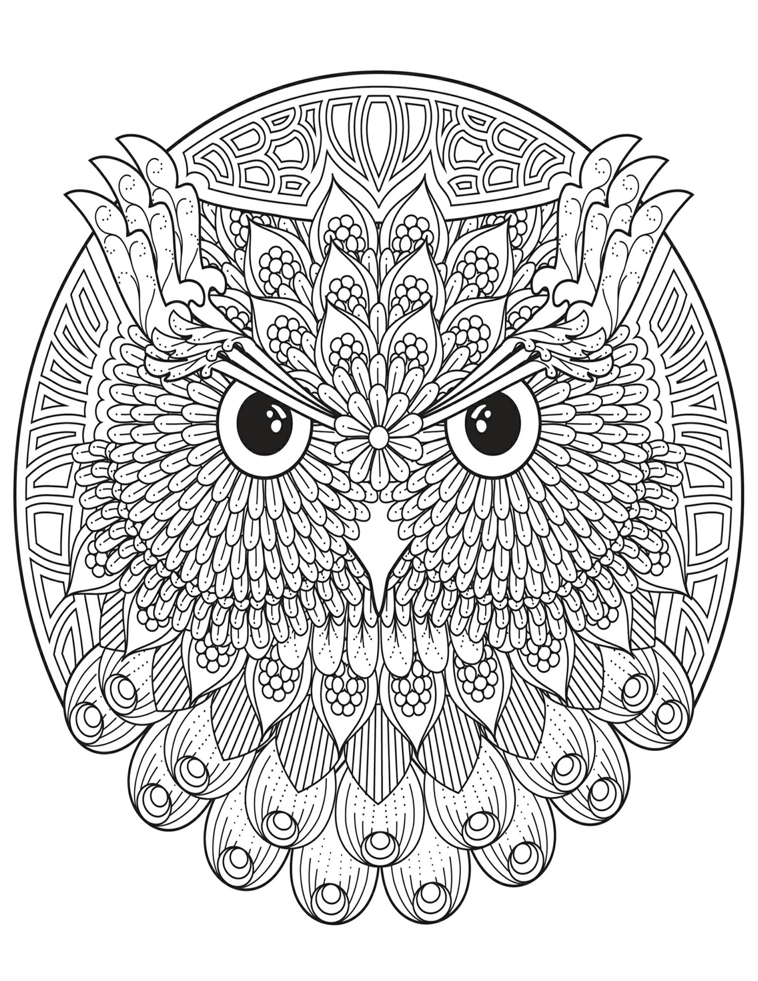 Pin By Wanda Zamojska On Pintura Y Dibujo Mandala Coloring Pages Owl Coloring Pages Mandala Coloring