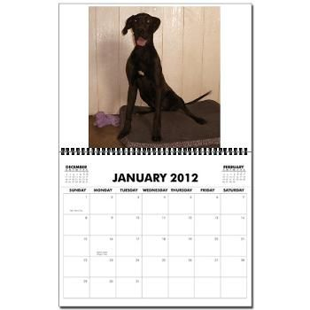 Harlequin Haven Dane Wall Calendar All Purchases Support The