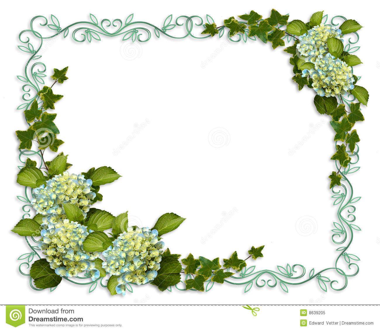 Wedding And Certificate Floral Border Border Clipart: Hydrangea Stock Illustrations, Vectors, & Clipart