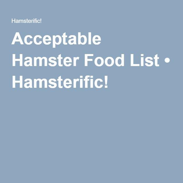 Acceptable Hamster Food List • Hamsterific!