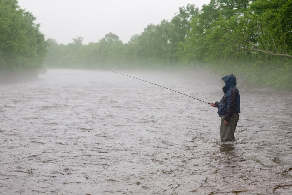 Do You Catch More Fish In The Rain The Best Time To Go Fishing Fishing World Lake Fishing Fishing Trip