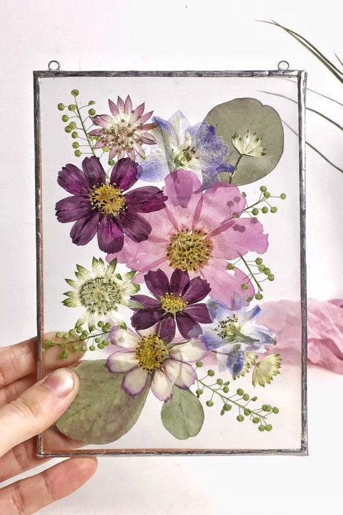 Photo of Pressed flower art – Botanical wall hanging: pressed flowers framed in double glass; herbarium frame