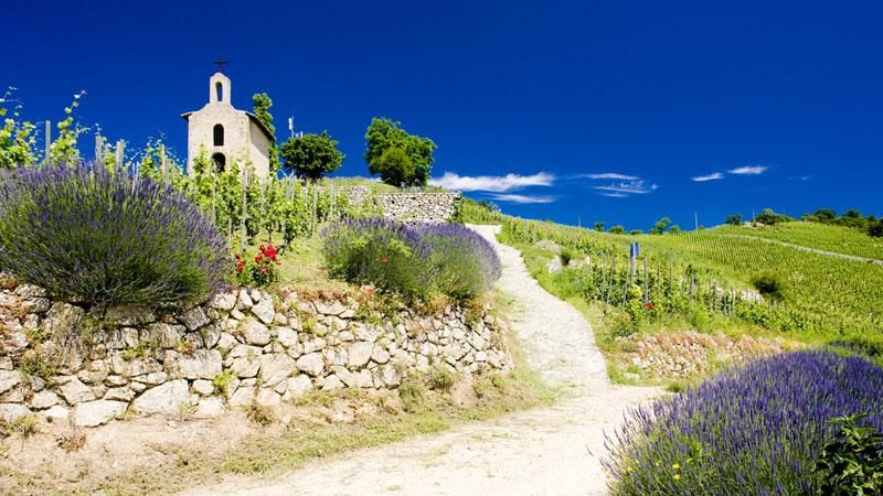 Provence: Walking and Wine | Walking, Wine, Self Guided Holidays France | Walking, Wine, Self Guided in France