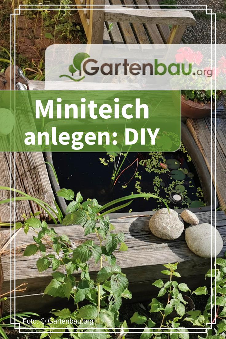 #Miniteich anlegen: Sie haben keinen Garten oder Terrasse und wollen dennoch ein...