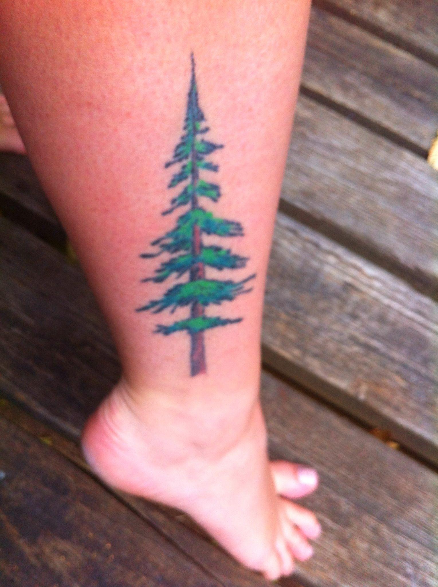 Made In Oregon My Douglas Fir Tree Tattoo Tattoos Jack Tattoo Tree Tattoo