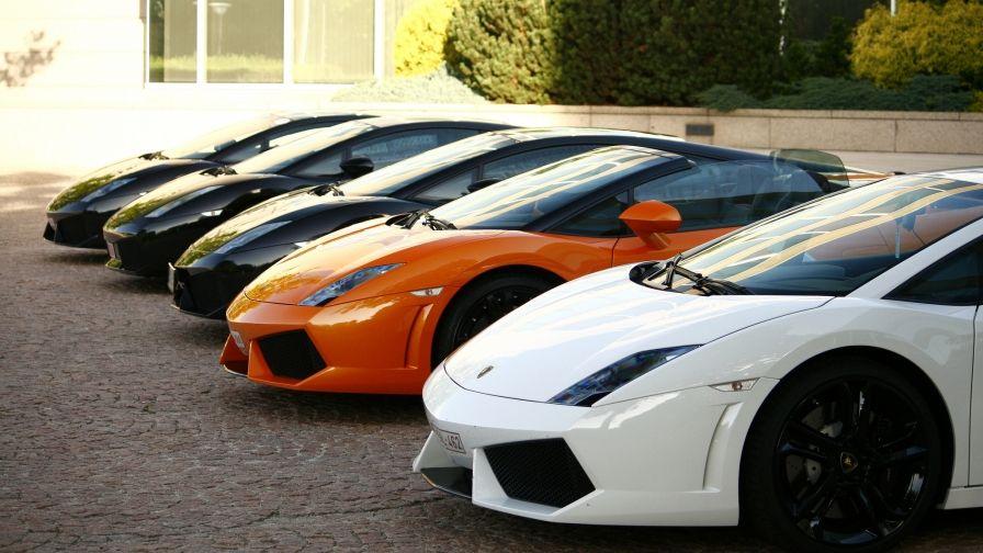 All Colors Lamborghini Collection Wallpaper Hd Wallpaper Download Free