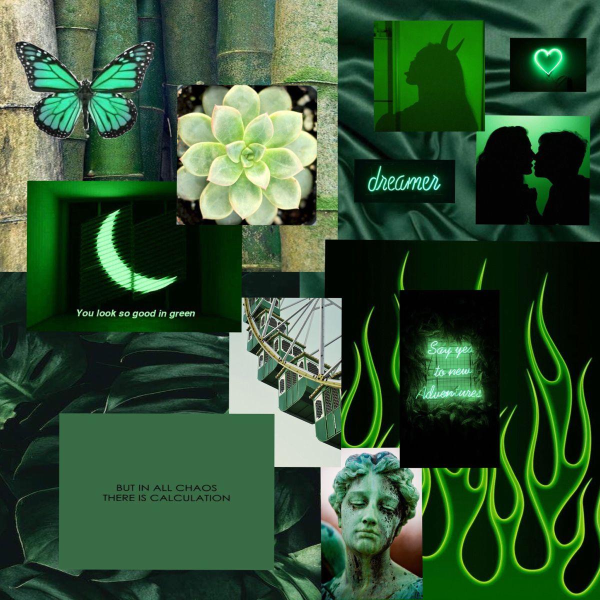 Green Aesthetic Iphone Wallpaper Green Dark Green Aesthetic Green Aesthetic