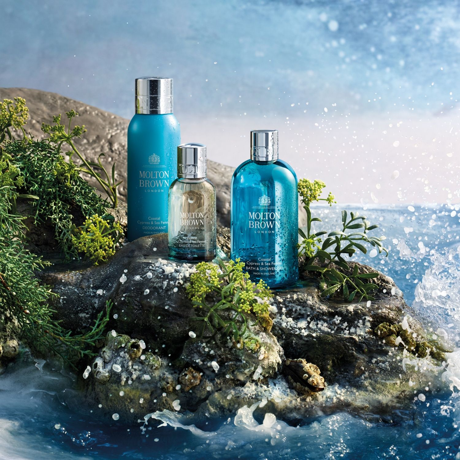 e2581b894ce1 Discover the uncharted in our Coastal Cypress   Sea Fennel Collection – a  collision of Australian