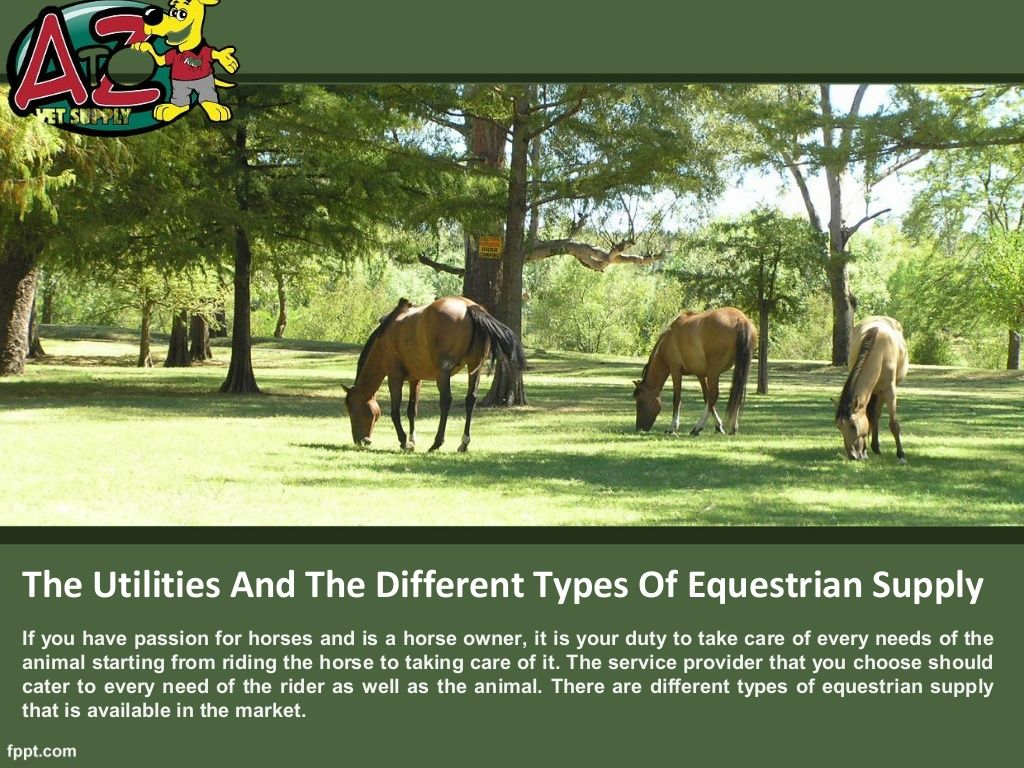 The Utilities And The Different Types Of Equestrian Supply By