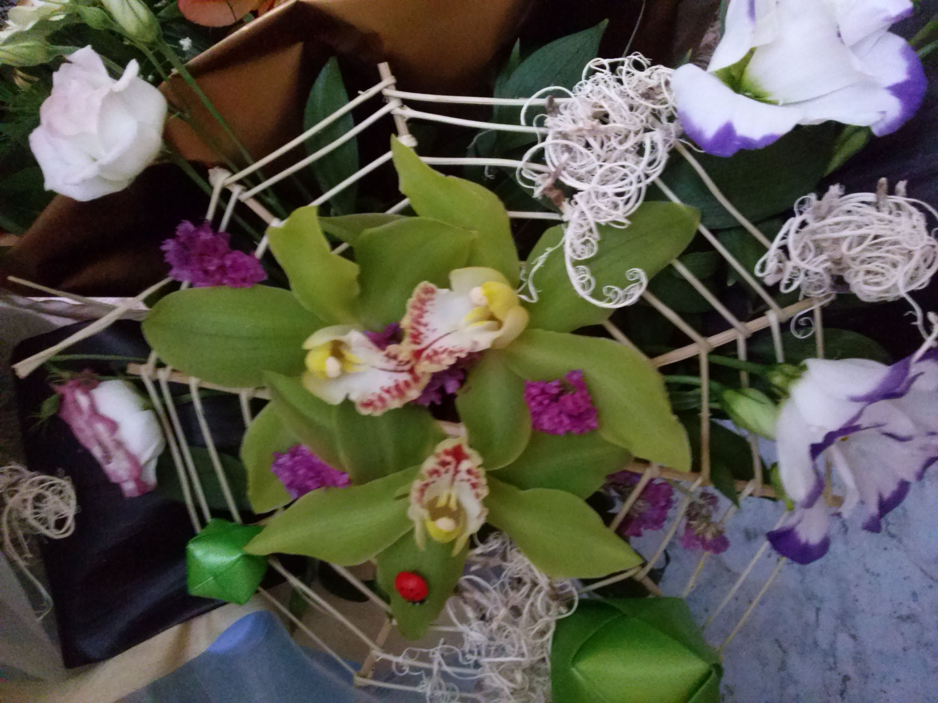 Graceful Orchid Birthday Flower Bouquet Discover Orchids Meaning