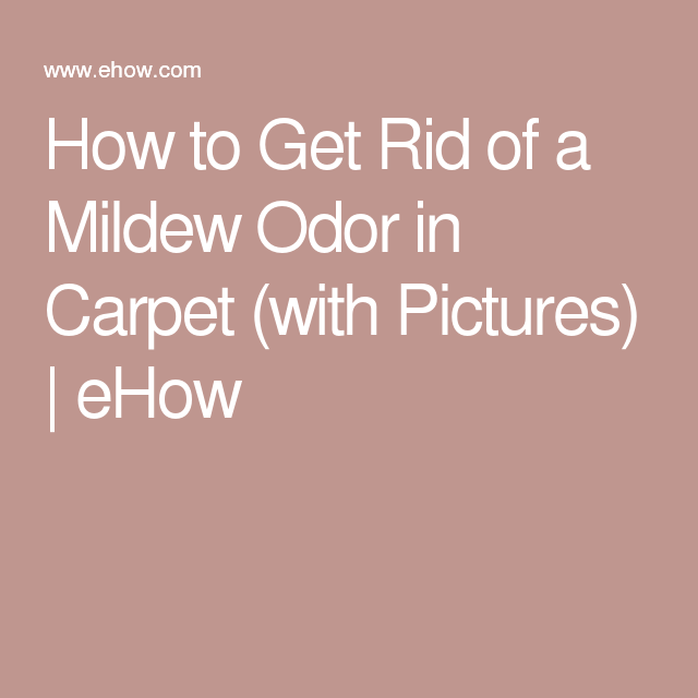 How To Get Rid Of A Mildew Odor In Carpet Removing