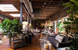 Havenly's Chicago Summer Guide | The Havenly Blog