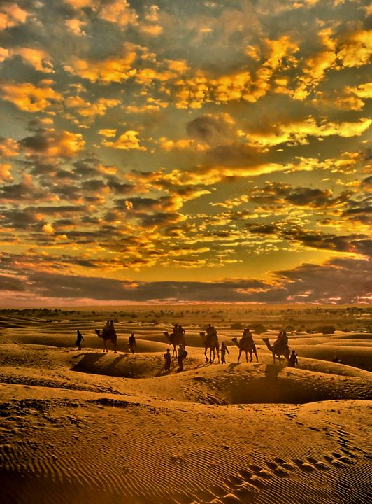 I Spent Three Days Traveling Across The Desert By Camel And Slept In Luxury Tents Amazing Trip
