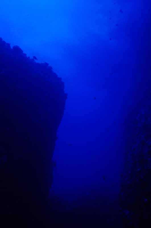 【50+】 海中 寫真 フリー - HDの壁紙畫像