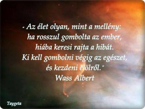 wass albert idézetek Wass Albert idézete az újrakezdésről. A kép forrása: Talján  wass albert idézetek
