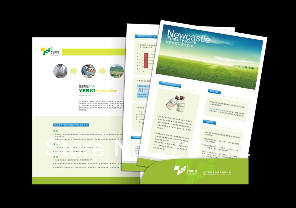 We are the leading Wholesale Company For Brochure Printing