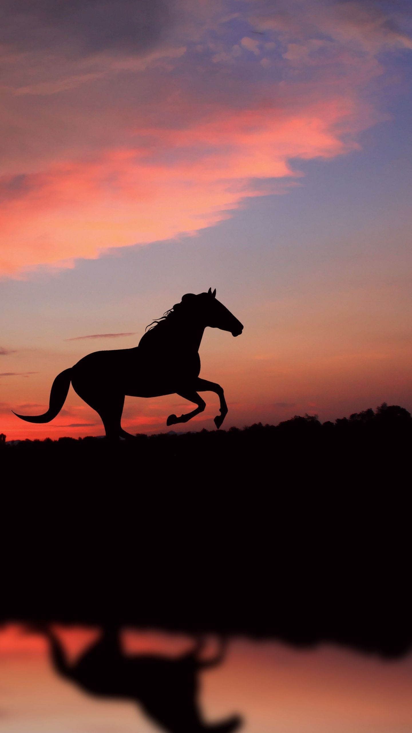 Animalbackgroundiphone Animalwallpaperiphone In 2021 Horse Wallpaper Beautiful Horse Pictures Horse Background