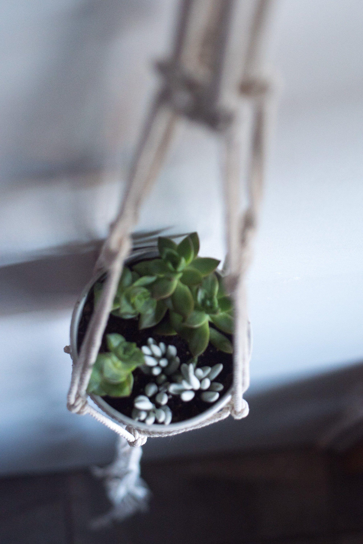 diy macrame planter