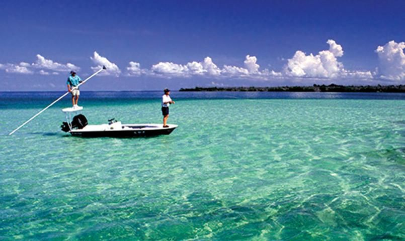 Back country fishing at ocean reef club golf community for Key largo fishing