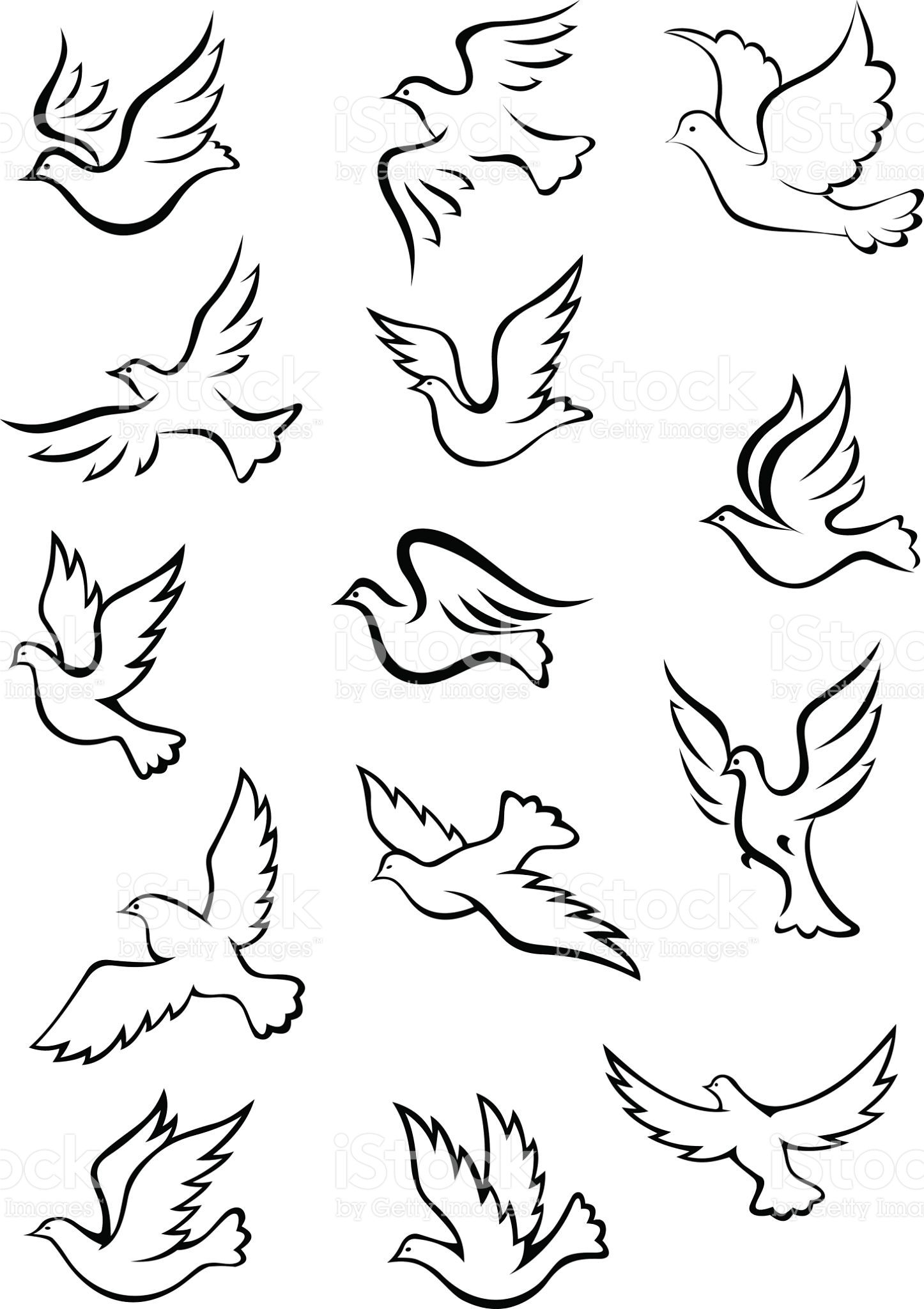Outline Graceful Dove And Pigeon Birds Set In Sketch Style For