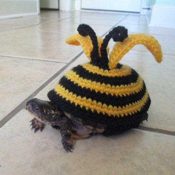 Turtle Costume Pet Turtle Costume Tortoise Ot Crochethatsbyolga Pet Turtle Turtle Costumes Turtle Sweaters